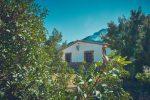 casas rurales el portillo yeste 00024